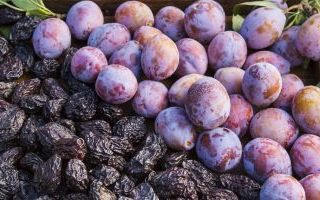 CA Prunes Introduces New Brand