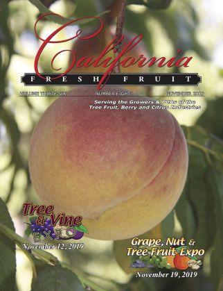 READ – November 2019 Issue
